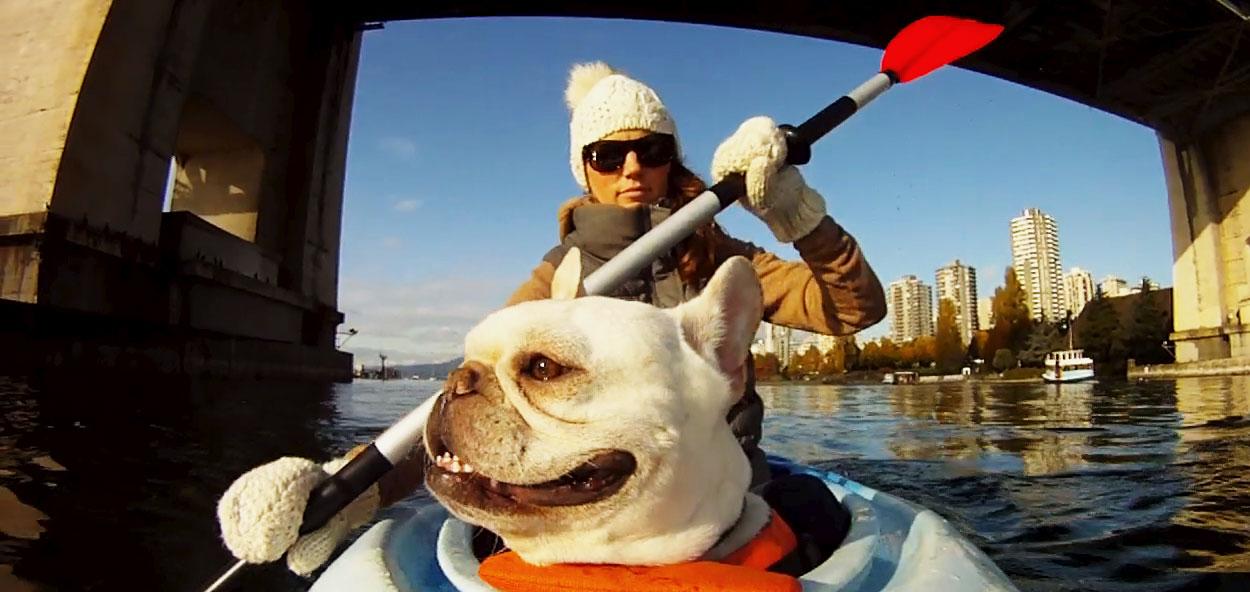 006_kayakdog